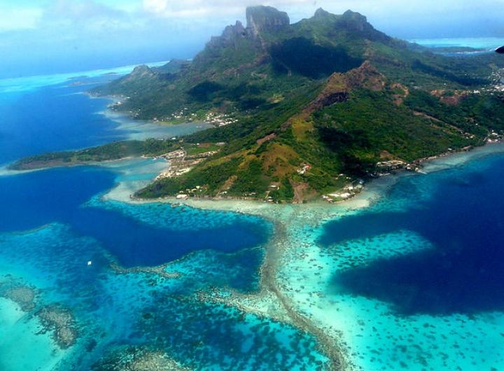 1491226179_bora-bora-polynesie-francaise-plongee-sous-marine.jpg