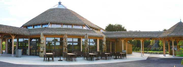 restaurant zoo.jpg